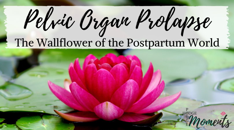 The Wallflower of the Postpartum World